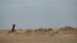 Safari Park - Parque del Serengeti