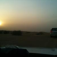 Safari por el desierto: Dubái