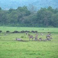 Economía de Tanzania: desarrollo del transporte